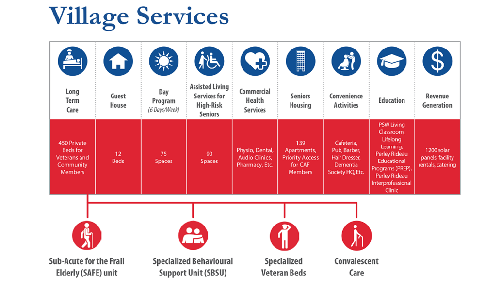 village services infographic